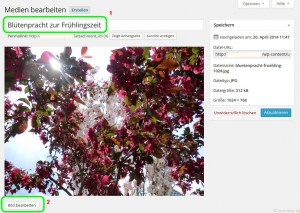 Detailansicht des Fotos in der Medienverwaltung der Blog-Software Wordpress